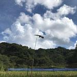 9月11日 小菅純撮影 タカが飛んでいます。 寺前谷戸