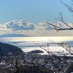 12月17日 鈴木浩一撮影 「良い天気です。」 ソッカ山頂から伊豆大島を望む。 ソッカ