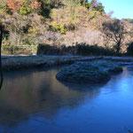 12月18日 小菅純撮影 一面凍りました。 寺前谷戸