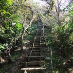 桐山 大 「仙元山から戸根山までの道程。Ⅰ」 2014.11.22撮影