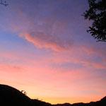2016年10月06日撮影 三木愛子 「葉桜からの朝焼け」