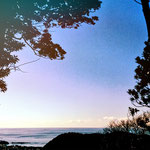 柳沢 千恵子 「戸根山山頂より」 2015年01月11日撮影 場所:戸根山