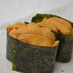 Sea Urchin (UNI) 生うに
