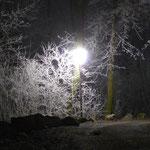 Mystische Stimmung beim Moon-Walk