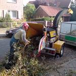 Zerlegung eines Baumes