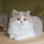 фото от 21.11.14