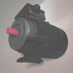 B3/14 kl Fu?/Flansch-motor