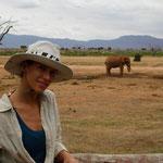 masai mara safari in2kenya Giovanni Samuel Angore