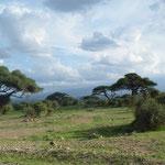in2kenya Masai Mara