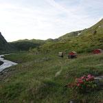 Toller Campplatz an Gebirgsbach