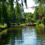 Les hortillonages, Amiens