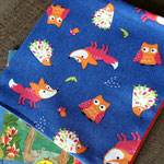 Kinderbuch - Hüllen - klein - Füchse