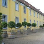 Event Catering Location Garten Düsseldorf Ratingen