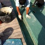 colocación interior canal, trabajo de chinos