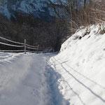 Schneerundgang durch den Ballenberg