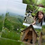 """Unterwegs auf dem """"Alde Gott"""" Wanderweg in Sasbachwalden"""