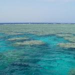 eines der vielen Riffe