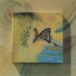 """"""" Farfalla nel girasole""""_acrilico su tela + tavola_30x30_2014"""