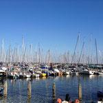 Hafen von Enkhuizen