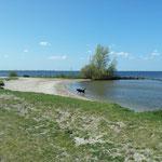 IJsselmeerküste