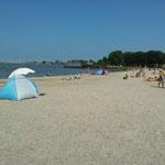 Strand in Andijk (ca. 1.200m entfernt)