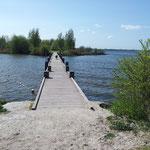 Wunderbare Wanderwege führen direkt vom Park am IJsselmeer vorbei
