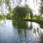 Der Ferienpark Het Grootslag - hier kann auch geangelt werden!