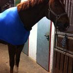 Loupy hat nun auch einen Voltianzug hihi
