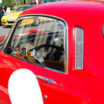 Swiss British Car Show Morges CH