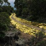 chemin de lumière, couverture de survie, Photo M. Latte