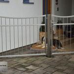 Edelstahltor - Gartentor mit Gartentür aus Edelstahl (© Raven Metall Design)