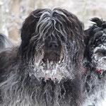 5 Monate, erster gemeinsamer Winterurlaub mit Miro