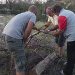 Leider können wir das gesammelte Holz erst in den nächsten Tagen verwenden...