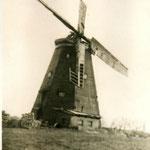 Alte Bockwindmühle von Krenzow