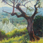 "'Olive Tree and Tuscan Landscape'. 14"" x 11"" Oil on panel. €595"