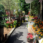 Garten Bluama Hüsli Bad Ragaz