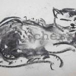 Bild vom Foto zeichnen, Vom Foto ein Original, Koh.lezeichnung, Meine Katze