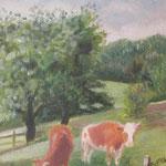 Kühe in Altweilnau, Oel auf LW