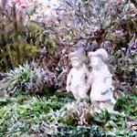 Erster Frost im Garten