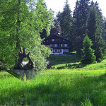 Hochmoorgebiet Kladská