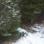 wieder ein wenig Schnee! :)