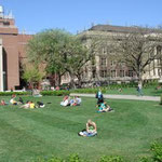 Campus, The University of Minnesota
