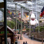 An indoor amusement park, the Mall of America