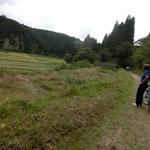 細い道を通り抜けると田畑が見えるポイントへ。