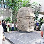 El Museo de Antropología
