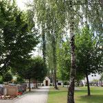 Friedhof mit hohem Baumbestand in Genderkingen