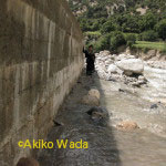 発電所の水路取水口を守る堤防。