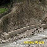 発電所の対岸にも堤防を造る。