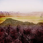 """Deserto spinoso"", arte digitale, 50x50 cm"