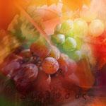 """Rosa di vigna"", arte digitale"